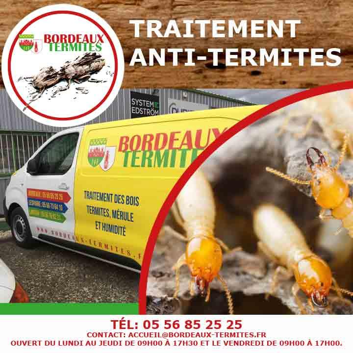 Médoc Termites